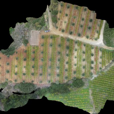 48 aerial images mosaic